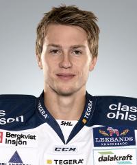 Henrik Haukeland